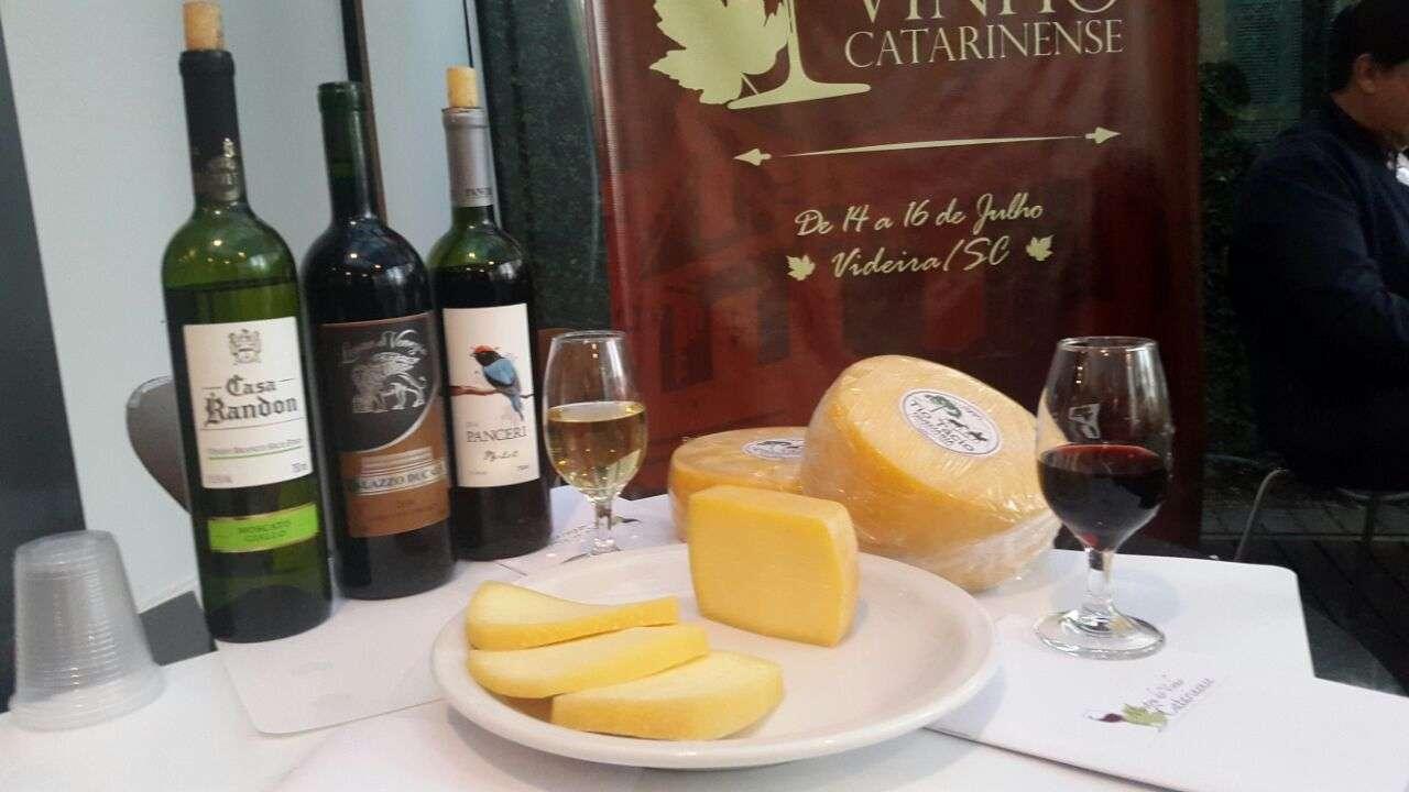 Foto de Vinho catarinense ganha destaque em degustações na Capital