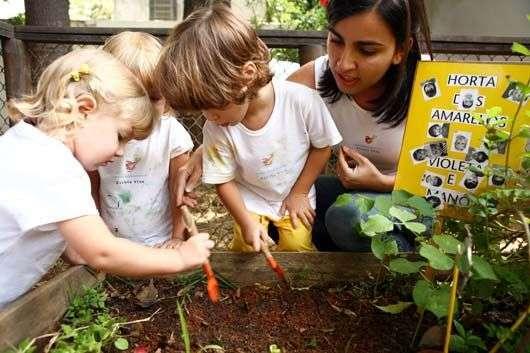 Foto de Horta orgânica de cenouras para crianças nesta Páscoa