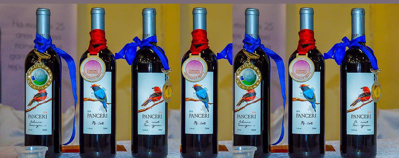 Foto de Mostra Vinho Catarinense em Videira superou as expectativas
