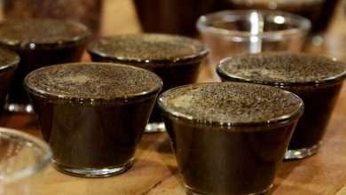 Foto de Coffee Of The Year divulga os 150 melhores cafés