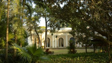 Foto de Casa-Museu Ema Klabin e MuBE promovem visita integrada  e  Oficina de  Herbário