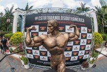 Foto de Foto com estátua de Schwarzenegger