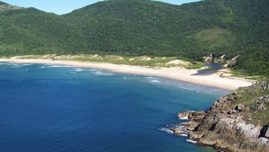 Foto de Trilhas de Florianópolis serão mapeadas em aplicativo