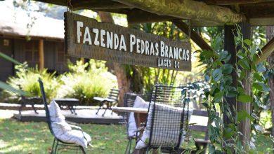 Foto de Hotel Fazenda Pedras Brancas  sedia congresso  I Congresso Brasileiro de Bem-estar e Saúde