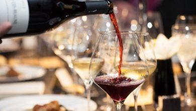 Foto de Uma Taça De Vinho Ao Dia Faz Bem A Saúde?