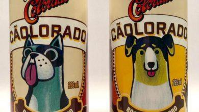 Foto de Colorado lança a Cãolorado sua cerveja boa para cachorro