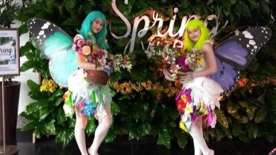 Foto de Spring Week – Desfiles, Palestras e Workshops marcam a chegada da primavera