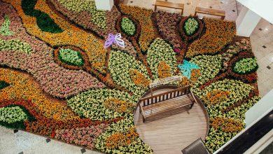 Foto de Atlântico Shopping fará distribuição gratuita de sete mil vasos de flores no próximo sábado