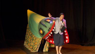 Foto de 1º Festival de Circo de Florianópolis será de 19 a 27 de outubro