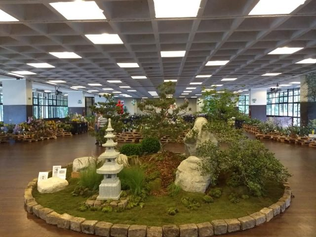 Exposição de Orquideas SBO