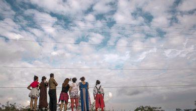 Foto de SESC Guarulhos recebe Mostra de Repertório do Palhaços Sem Fronteiras Brasil em Novembro