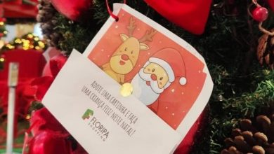 Foto de Decoração de Natal no Floripa Shopping tem atração com as Árvores do Bem