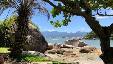 Foto de Pousada Ilha do Papagaio, um paraíso para casais com ou sem filhos