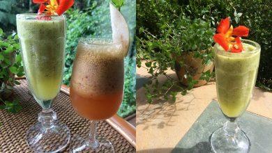 Foto de Sucos funcionais traz benefícios e três receitas exclusivas Kurotel