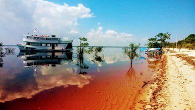 Foto de Amazônia: Descubra as belezas da floresta mais comentada do mundo