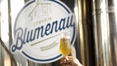 Foto de Cerveja Blumenau levará 30 rótulos para o Festival Brasileiro da Cerveja
