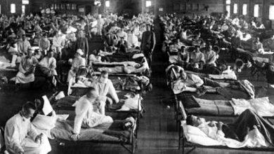 Foto de Joana Freitas separa os maiores e mais importantes epidemias da história