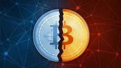 Foto de As dúvidas mais frequentes sobre o Halving do Bitcoin