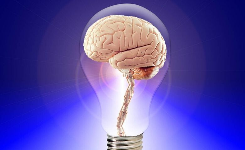 Business Intelligence ajuda a aumentar a eficiência de empresas