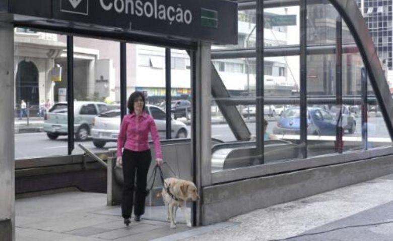 Olhar de Cão traz entrevista com advogada Thays Martinez